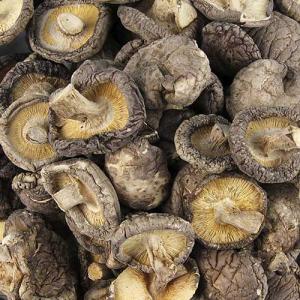 Ciuperci shiitake pret
