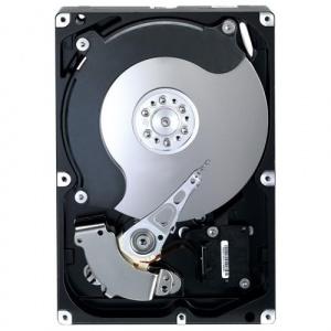 Fujitsu Hot-Plug 300GB (S26361-F5532-L530)