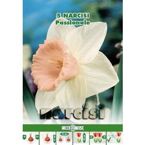 Green Paradise Bulbi Narcise Passionale, alb-roz, 5 buc