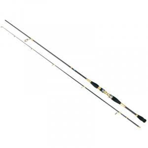 Baracuda Avalon 2.1 m A: 30-80 g