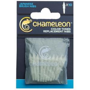 Chameleon Varf marker tip Brush 10 buc/set CT9501UK