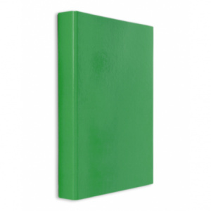 Daco Caiet mecanic plastifiat, 2 inele, A4, verde