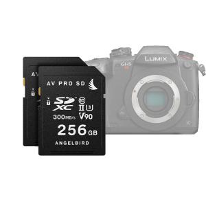 Angelbird BF2018 AVPro Match Pack for Panasonic GH5
