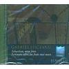Gabriel Liiceanu Sebastian, mon frere. Scrisoare catre un frate mai mare CD Rom