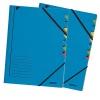 Esselte Mapa Fashion carton cu separatoare 12 separatoare E39120035